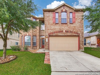 San Antonio Single Family Home New: 27323 Trinity Cross
