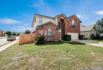 Bexar County Single Family Home New: 24603 Wine Rose Path