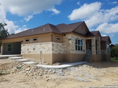 Fischer TX Single Family Home New: $249,900