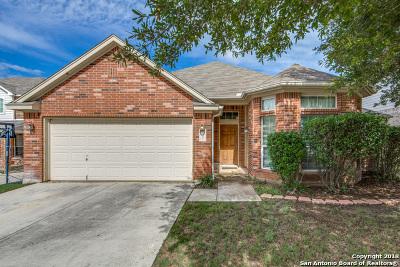 San Antonio Single Family Home New: 21907 Dolomite Dr