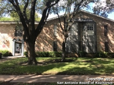 San Antonio Condo/Townhouse New: 215 W Mistletoe Ave #205 A