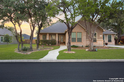 San Antonio Single Family Home New: 9511 Lesters Way