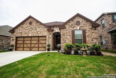 Boerne Single Family Home New: 229 Mustang Run