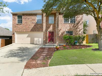 San Antonio Single Family Home New: 10143 Cedarcliff
