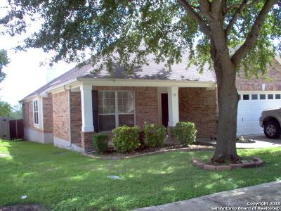 Schertz Single Family Home New: 556 Ginsberg Dr