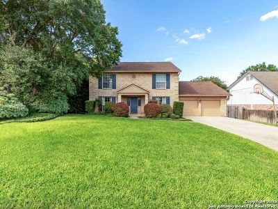 San Antonio Single Family Home New: 2927 Albin Dr