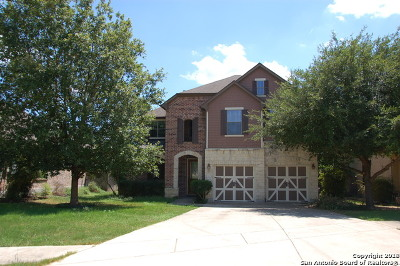 Boerne Single Family Home New: 113 Clear Water