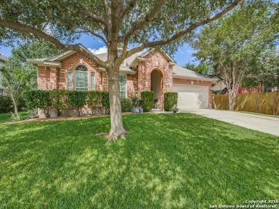 Cibolo Single Family Home New: 108 Greenstone