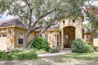 New Braunfels Single Family Home New: 508 Wilderness Way