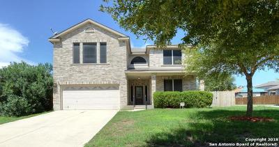 Cibolo Single Family Home New: 124 Lindy Hills