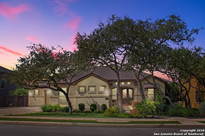 San Antonio Single Family Home New: 527 Rio Springs