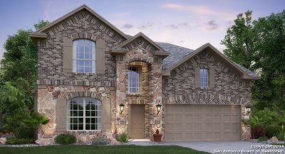 Schertz Single Family Home New: 10331 Owl Woods