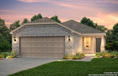 San Antonio Single Family Home New: 13130 Spruce Dam