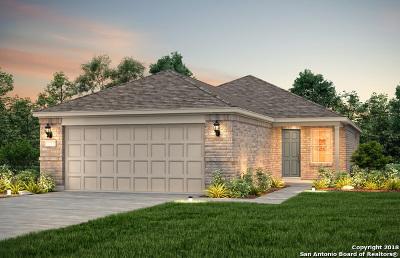 San Antonio Single Family Home New: 13214 Spruce Dam