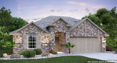 Schertz Single Family Home New: 10323 Owl Woods