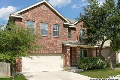 San Antonio Single Family Home New: 26803 Redstone Hill