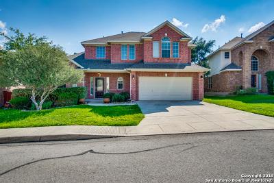 San Antonio TX Single Family Home New: $322,000