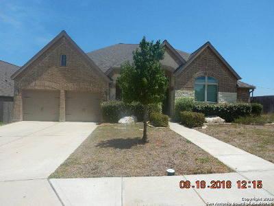 New Braunfels Single Family Home New: 504 Oak Brook Dr