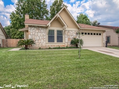 San Antonio Single Family Home New: 9118 Valley Bend