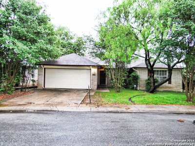 San Antonio TX Single Family Home New: $229,500