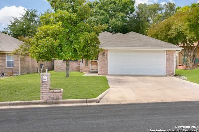 New Braunfels Single Family Home New: 973 Woodrow Circle