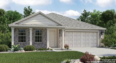 New Braunfels Single Family Home New: 2918 Daisy Meadow