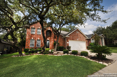 San Antonio Single Family Home New: 9511 Rio Frio