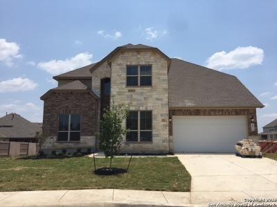 San Antonio Single Family Home New: 2014 Derussy