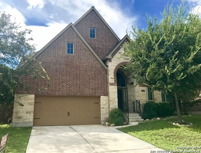 San Antonio Single Family Home New: 13530 Palatine Hill
