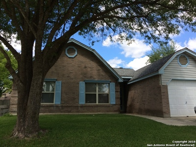 Guadalupe County Single Family Home New: 3409 Country Vw
