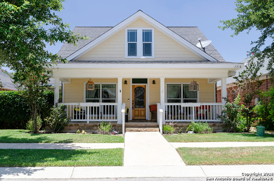 New Braunfels Single Family Home New: 2356 Village Path