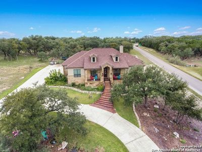 New Braunfels Single Family Home New: 118 Sun River