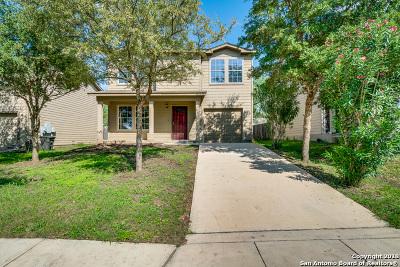 San Antonio Single Family Home New: 8410 Mescal Pass