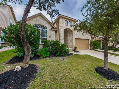San Antonio Single Family Home New: 6243 Ozona Mill