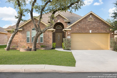 Helotes Single Family Home For Sale: 8919 Black Forest