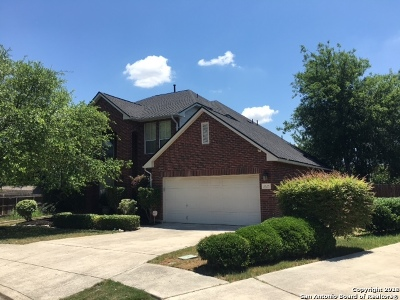 Bexar County Single Family Home New: 2623 Cinco Woods
