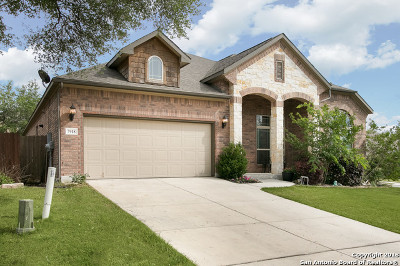 Boerne Single Family Home New: 7918 Scenic Chase