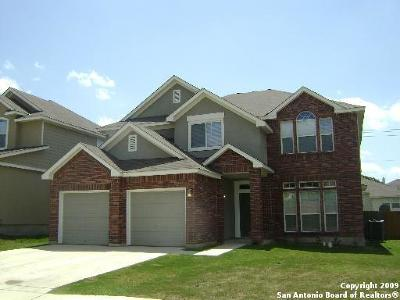 San Antonio TX Single Family Home New: $289,000