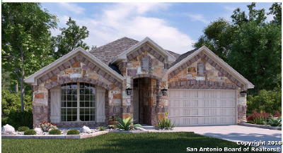 New Braunfels TX Single Family Home New: $324,499