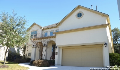 San Antonio TX Single Family Home New: $619,500