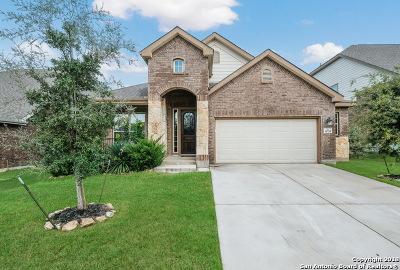San Antonio Single Family Home New: 11754 Belicena Rd