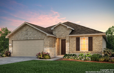 New Braunfels Single Family Home New: 2814 Ridgeberry Road