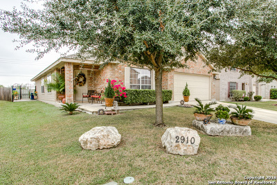 Schertz Single Family Home New: 2910 Sunday Song