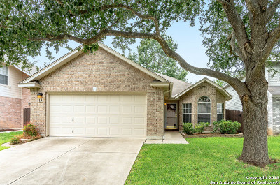 Cibolo Single Family Home New: 13 Pembroke Ct