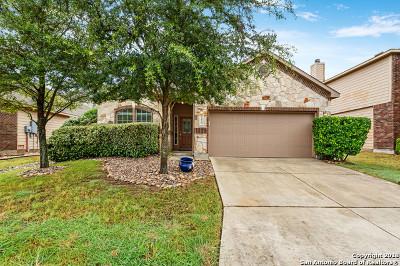 San Antonio Single Family Home New: 27419 Trinity Cross