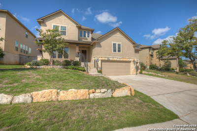 San Antonio TX Single Family Home New: $384,900