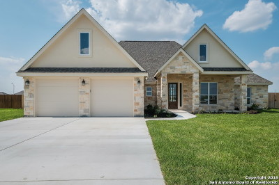 Seguin Single Family Home For Sale: 1462 Prairie Pass