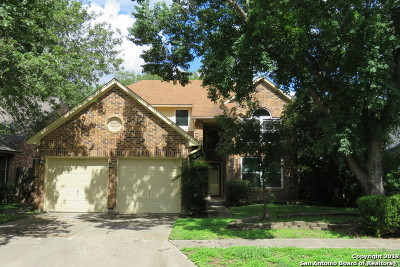 San Antonio Single Family Home New: 6411 Lost Holly