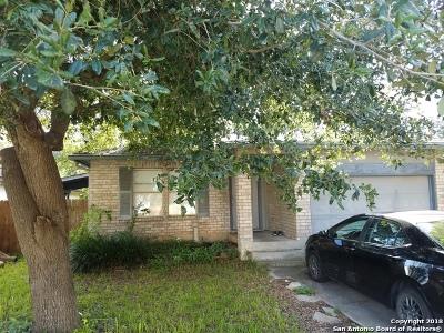 San Antonio TX Single Family Home New: $138,800