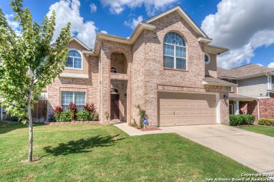 San Antonio Single Family Home New: 9535 Wolf Pt